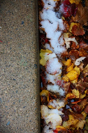 snowfallandleaves