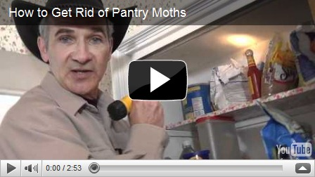How To Get Rid Of Pantry Moths And Giveaway