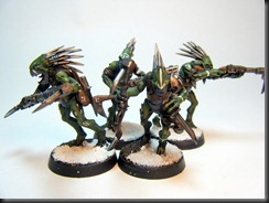 Kroot Group (3)