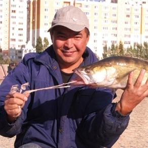 Astana 023