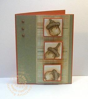 wt192--Copper acorns