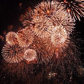 sparkles by Uschi Rules - Abstract Fire & Fireworks ( sparkles, harbor, firework, harbour, nightscene, fireworks, nights, night, gold, golden, hamburg,  )