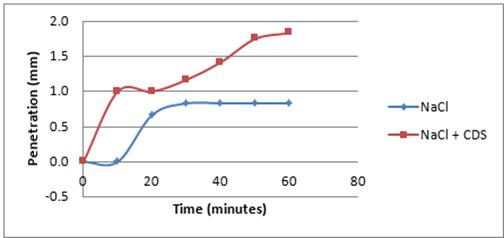 Figure 7 - Ice Penetration (mm)