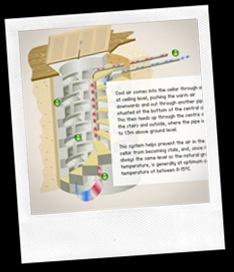 spiral-wine-cellar-diagram-drawing