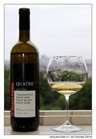 Dobrá vinice Quatre 2007