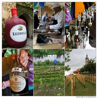 winefest_melnik_2010_2
