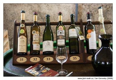 Salon vín ryzlinky