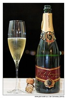 Champagne J.L. Vergnon Blanc de Blancs Brut Premier Cru