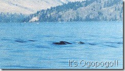 ogopogo3