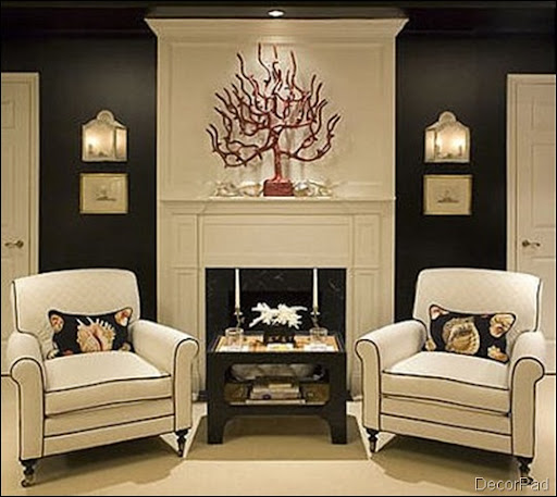 Black and White Home Design Ideas