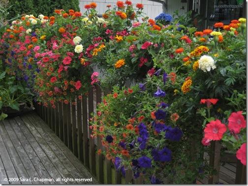 traditioanl flowers artsquadgraphics