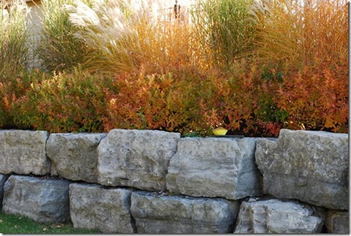 RS stone wall grasses