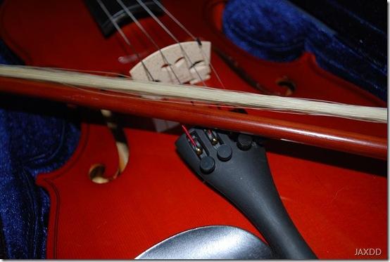 violin 6 close