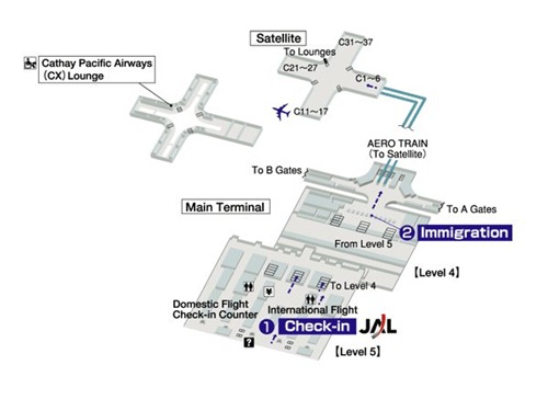 اقسام المطار