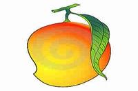 المانجو Mango