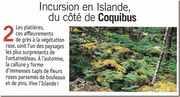 incursion en Islande_Coquibus