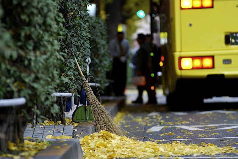 Modern Tokyo, Ancient Broom