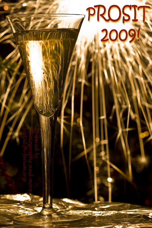 Prosit 2009!! - Happy New Year 2009!! | Ich wuensche allen ein Gutes ...