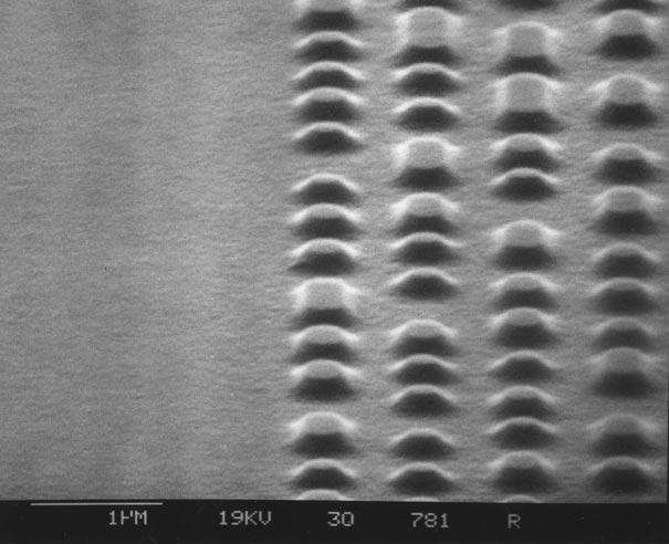 عالم المجهريات Looking-at-the-World-through-a-Microscope-dvd-disc.jpg