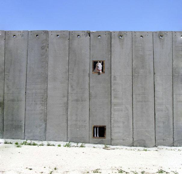 http://lh4.ggpht.com/_9F9_RUESS2E/SsZ5fk5TYZI/AAAAAAAABUw/xbXQm_EABVs/s800/banksy-graffiti-street-art-palestine-horse.jpg