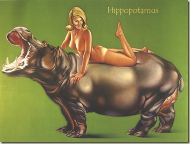 1967_Hippopotamus