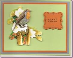 Kathy's 3D Birdies