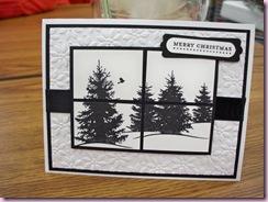 Kathy's trees