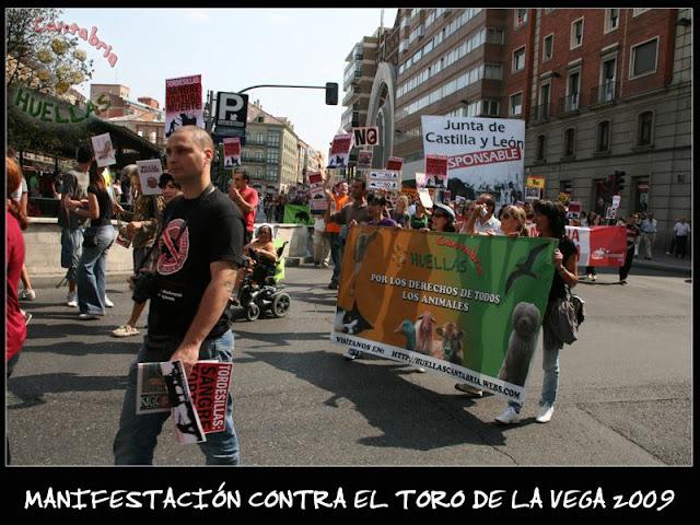 Manifestaciones contra el Toro de la Vega 2009 IMG_2334