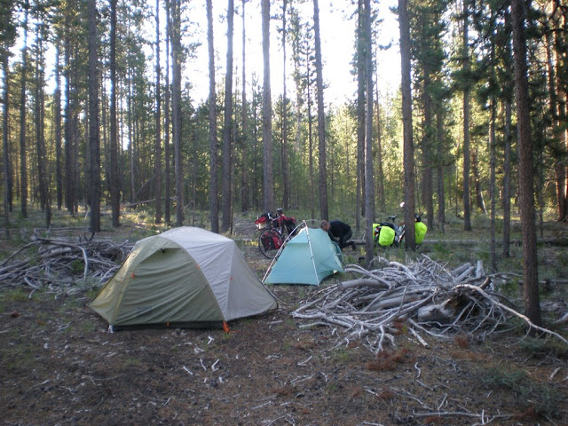 Camping in the national forest 8mi. North of West Yellowstone