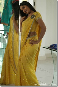 Madhavi Latha (26)