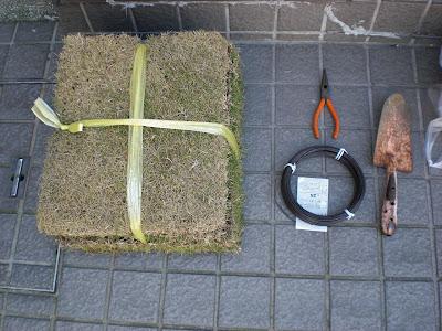 芝生で植木鉢作って草木を植える。
