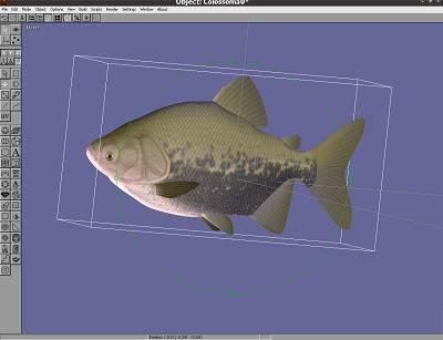 anim8or free 3d modeler freeware for 3d modeling texturing and animation