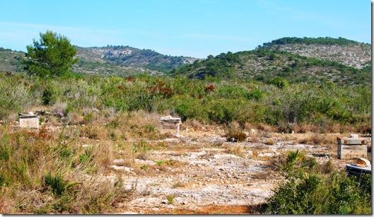 Irta Ebri-Argilaga-Parra-Ebri 045