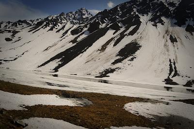 Swiss-Alps-6.jpg