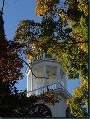 steeple-leaves2