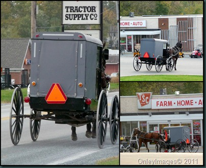 tractor supply collage