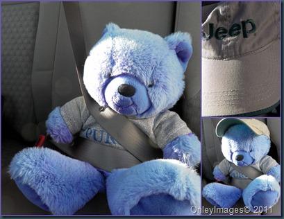 purple bear collage