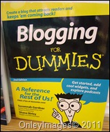 blogging dummies bk