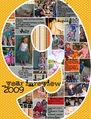 2009review2
