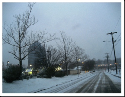 Durham Snow 1-20-09 (13)