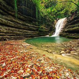 Autumn in waterfall by Hasim Sahin - Landscapes Waterscapes ( erfelek, waterfall, tatlıca, turkey, sinop )