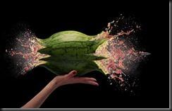 watermelon_hand_0_486_310
