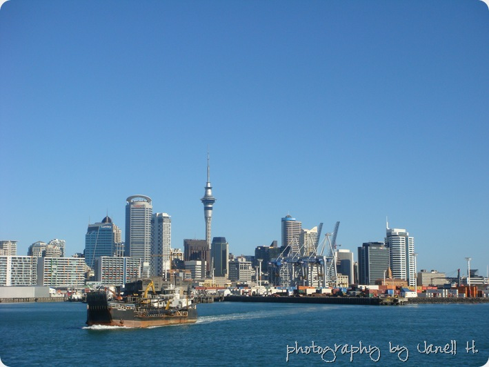 newzealand (11)