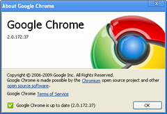 Google chrome 2.0.172.37