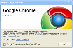 Google Chrome 3.0.195.33 Update