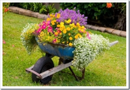decorating-with-color-flower-wheelbarrow