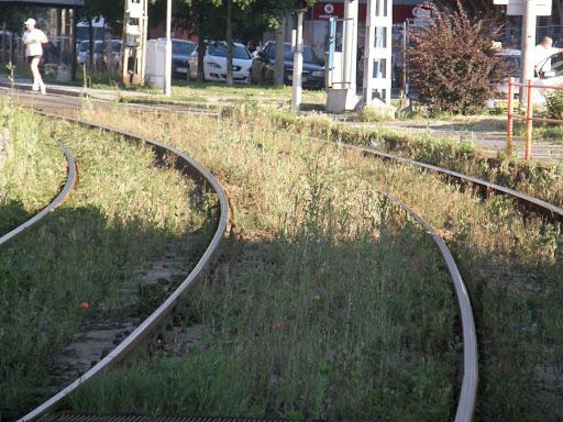 blog, BKV,  Soroksári út,  Budapest,  IX. kerület,  9. kerület, villamos, Ferencváros, sínek, villamospálya, füves villamospálya, gyepesített villamospálya, zöld sínek