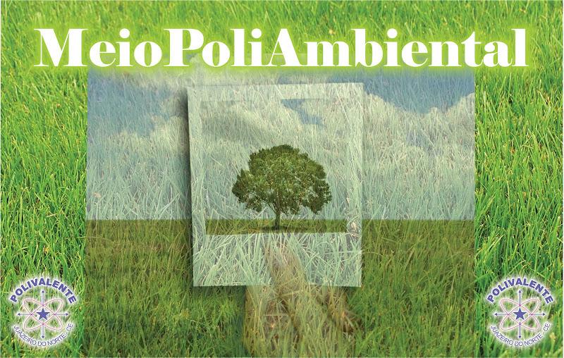 PoliAmbiental