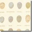 Aviary - Bird Eggs Ivory #3968-11
