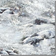 Winter's Gleam - Snowy Ground Dk. Ice #20-449